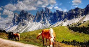 Camping in Südtirol / Dolomiten