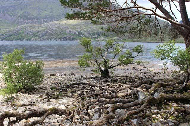 Der mystische Süßwassersee Loch Ness