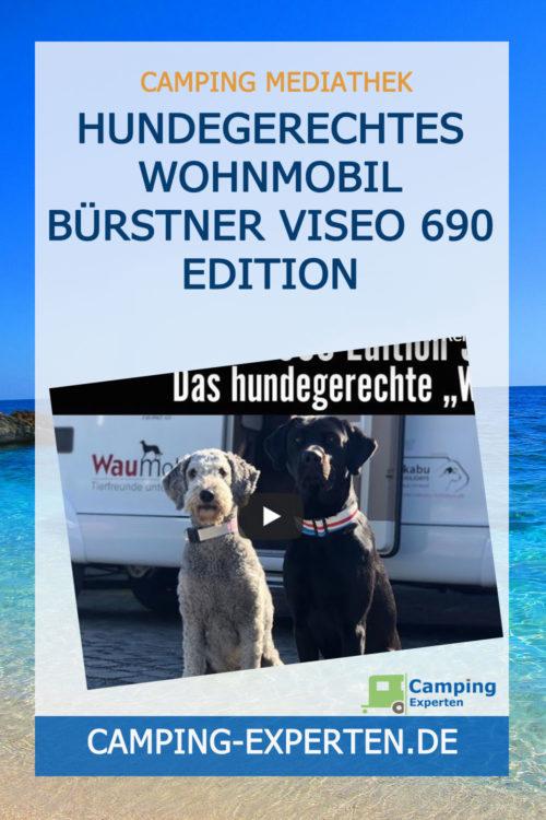 Hundegerechtes Wohnmobil Bürstner Viseo 690 Edition