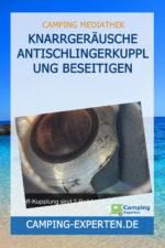 Knarrgeräusche Antischlingerkupplung beseitigen