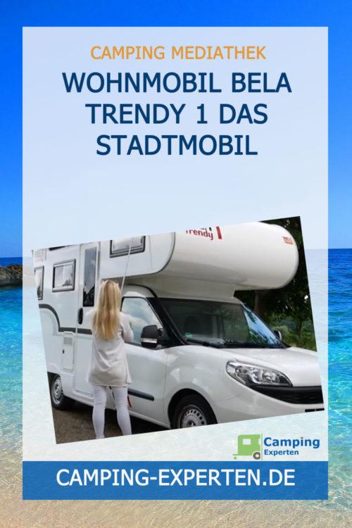 Wohnmobil BELA trendy 1 Das STADTMOBIL